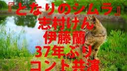 となりのシムラ1.jpg